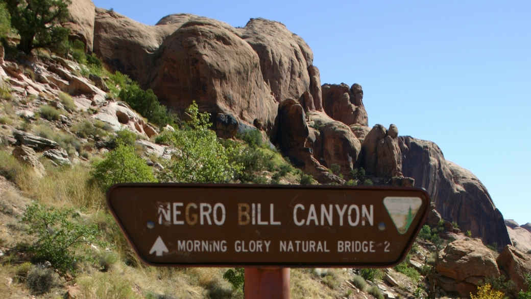 Negro Bill Canyon