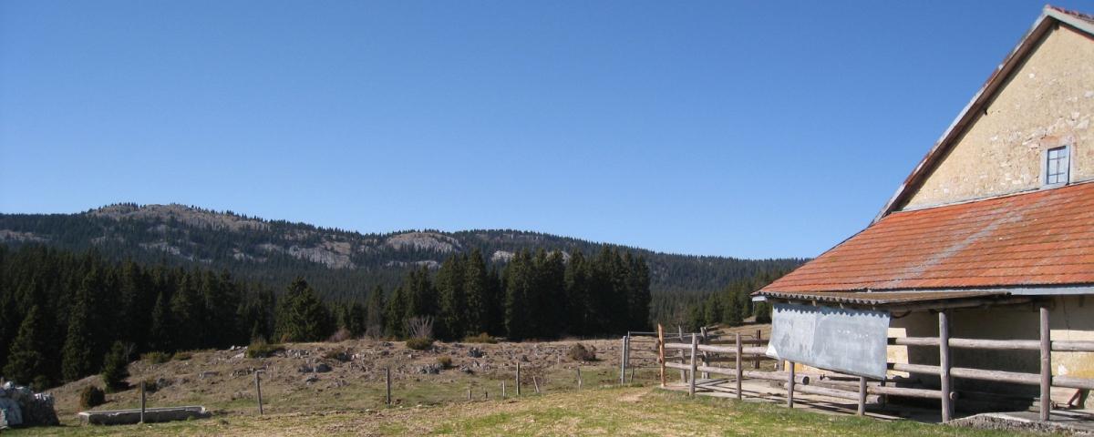 Cabane du Peney