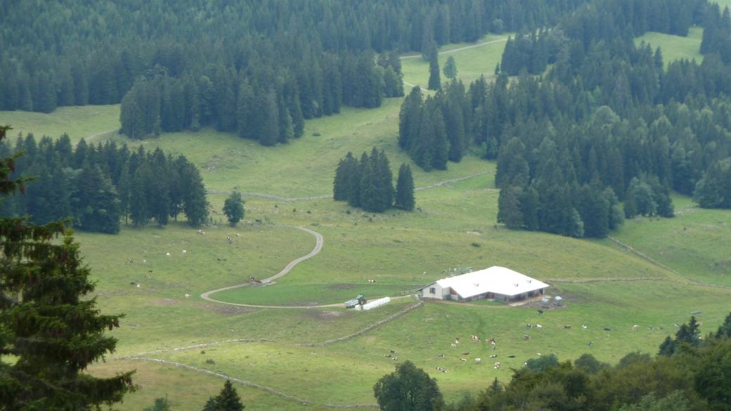 Les Coppettes - Vaud - Jura