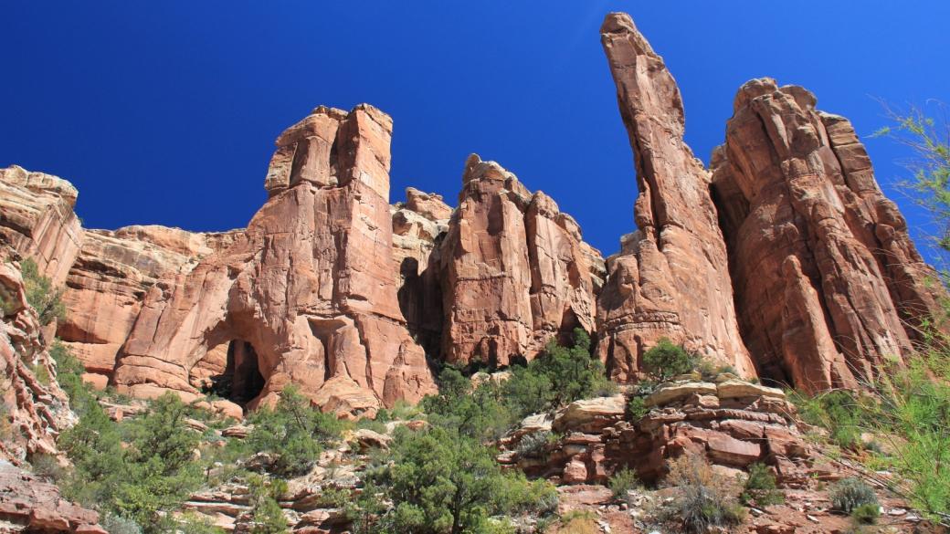 Vue sur Angel Arch, dans Arch Canyon, près de Blanding, Utah.