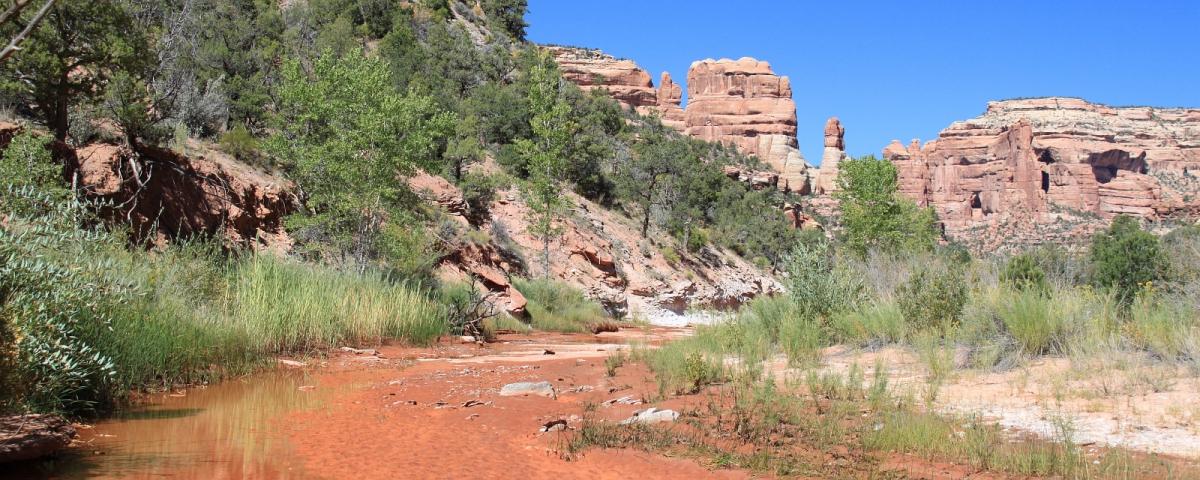 Arch Canyon, près de Blanding, dans l'Utah.