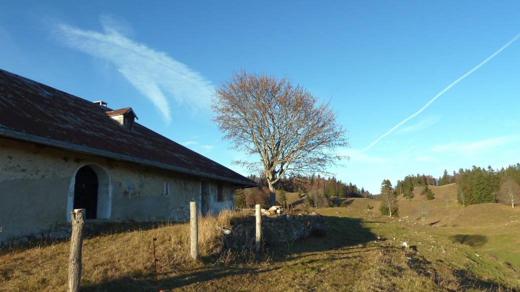 Le Planet - Vaud - Suisse