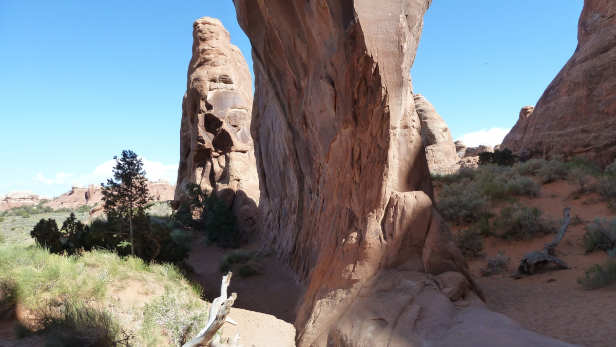 Pine Tree Arch - Arches National Park - Utah