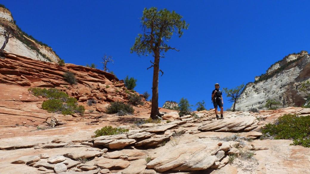 Marie-Catherine du côté de la Checkboard Mesa. À Zion National Park, dans l'Utah.