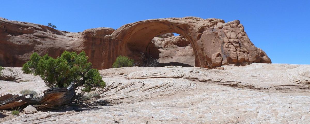 Pritchett Arch