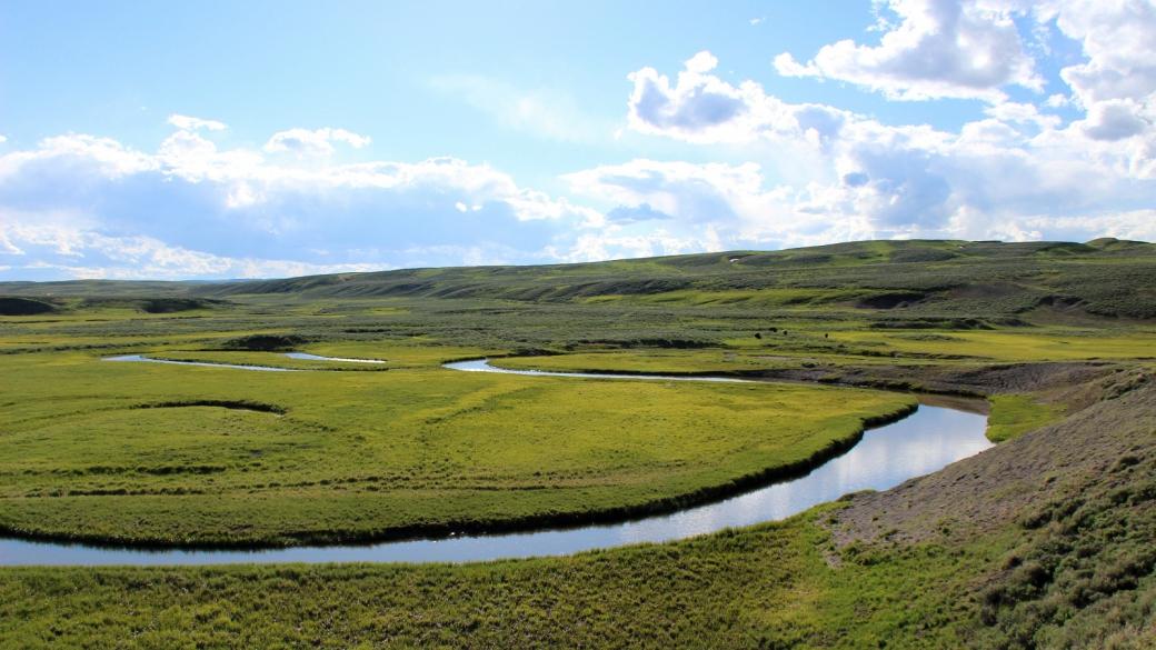Vue sur Hayden Valley, une immense prairie que parcourt la Yellowstone River. À Yellowstone National Park.