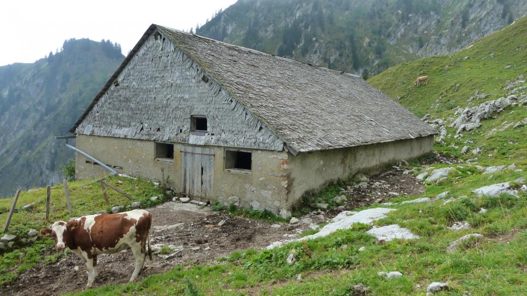 Chalet d'alpage de la Joux des Heures, sur la commune de Haut-Intyamon, Fribourg.
