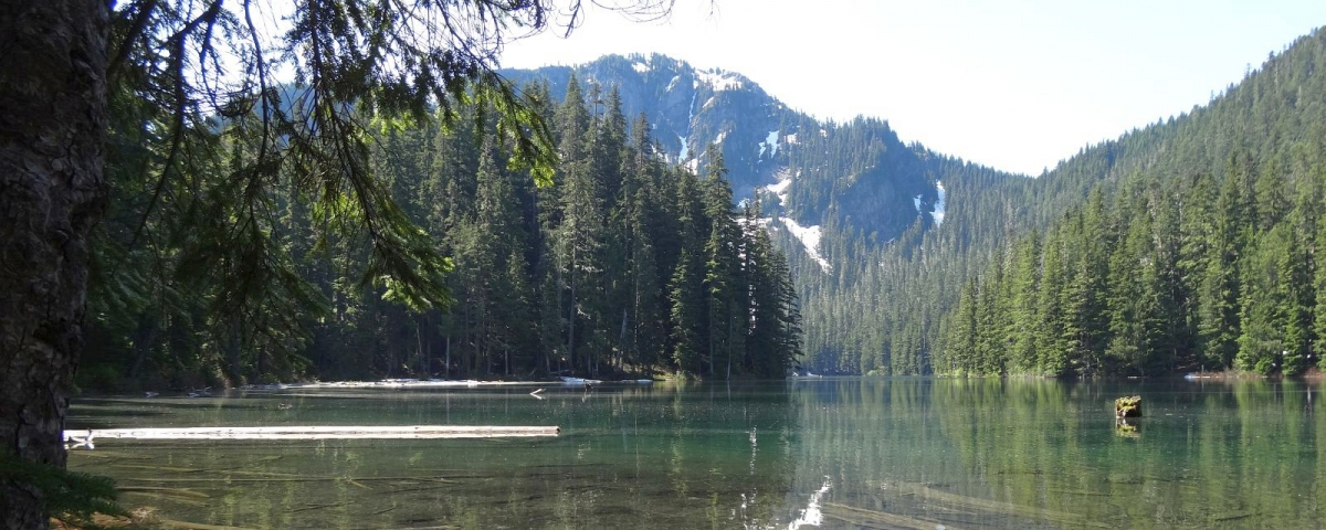Lake George, au Mount Rainier National Park.