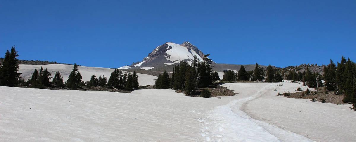Mount Hood Meadows