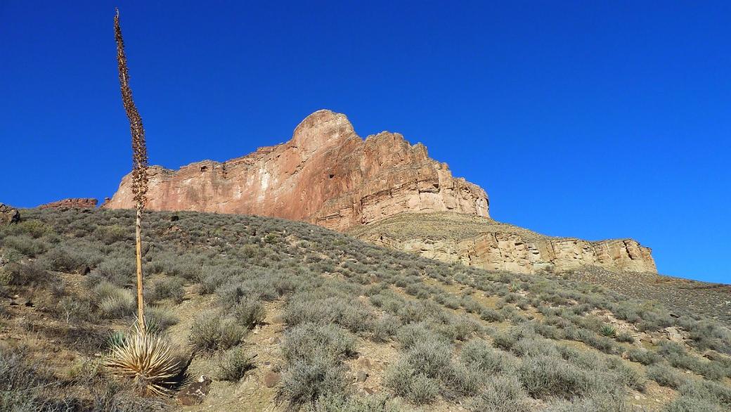 """Cette montagne, c'est le """"Battleship"""", vue depuis le sentier qui mène à Plateau Point, au Grand Canyon National Park, Arizona."""