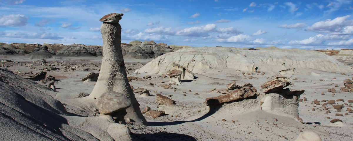 Hoodoo solitaire à Bisti Wilderness.