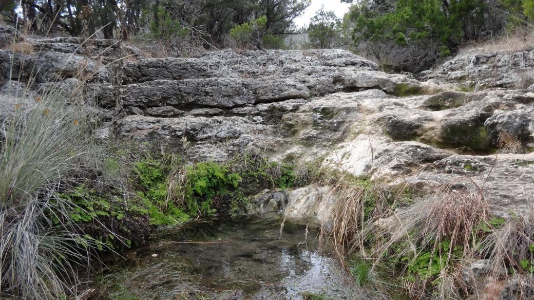 Jones Spring, une source à l'intérieur du Pedernales Falls State Park, au Texas.