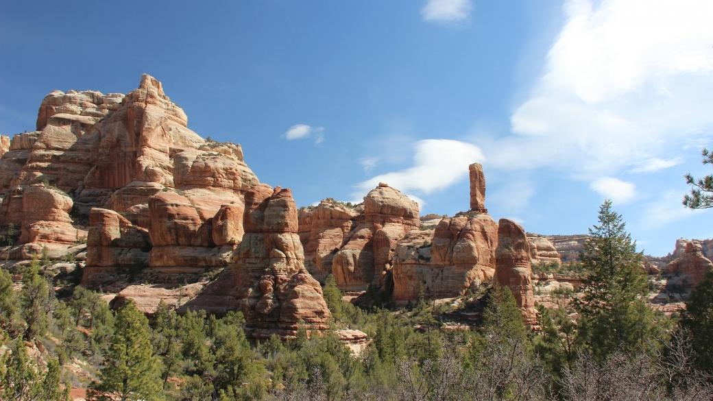 Hammond Canyon dans toute sa splendeur. Près de Blanding, dans l'Utah.