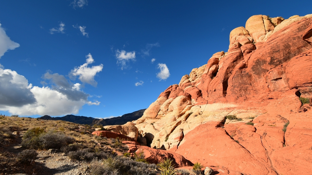 Calico Hills - Red Rock Canyon National Conservation Area