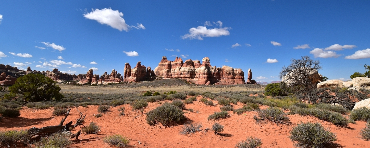Chesler Park, c'est un endroit tellement magique ! A Canyonlands National Park, section de Needles.