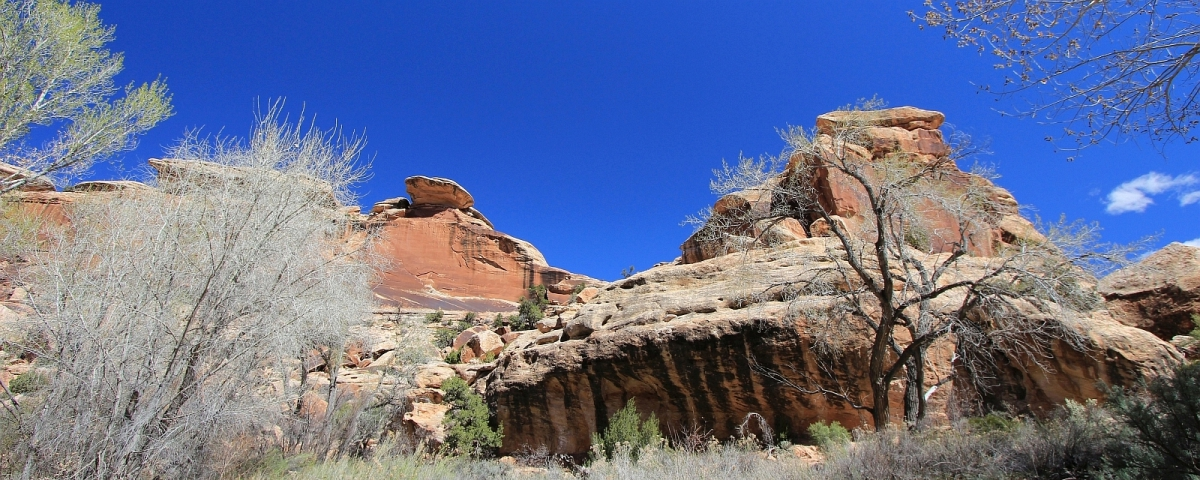 Polly's Canyon, près du Grand Gulch, dans l'Utah.