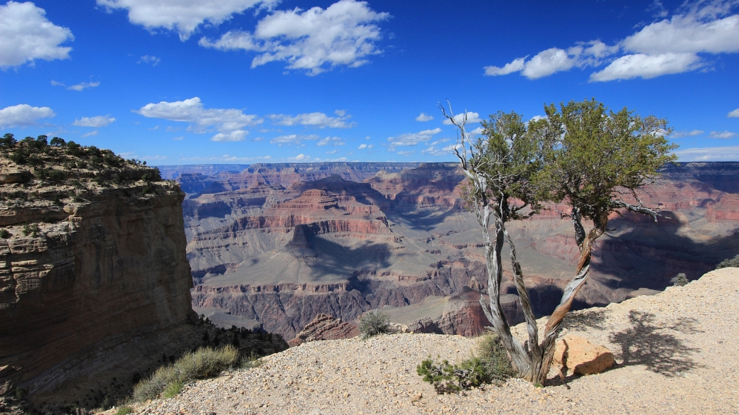 Vue sur le Grand Canyon depuis Pima Point sur le Rim Trail, au Grand Canyon, dans l'Arizona.