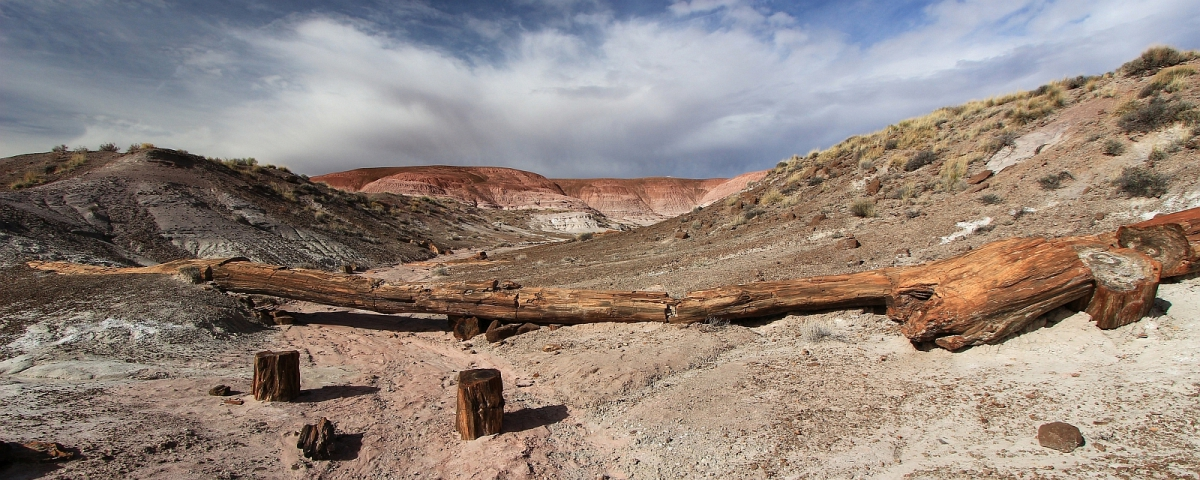 Onyx Bridge - Petrified Forest National Park - Arizona