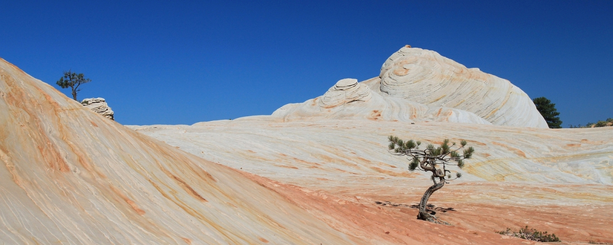 Canaan Mountain - Southern Utah