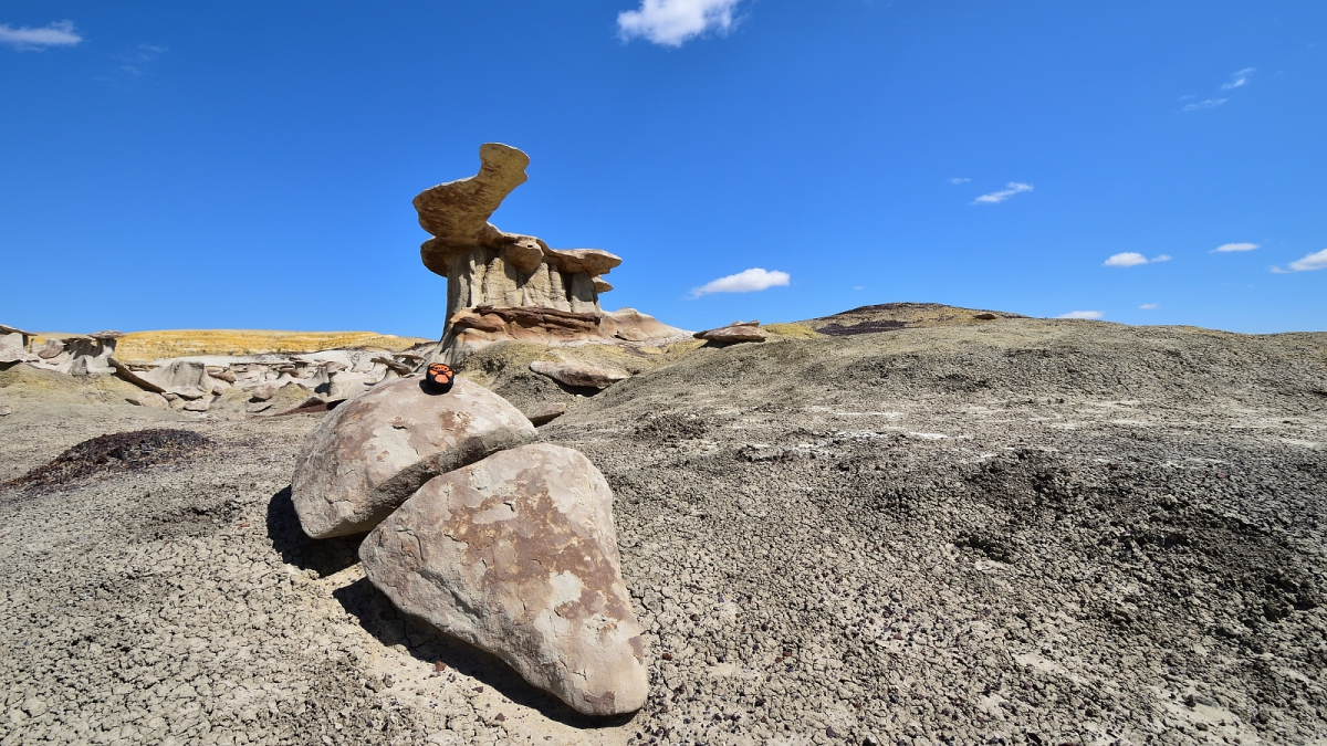 King of Wings – Ah-shi-sle-pah Wilderness Area – New Mexico
