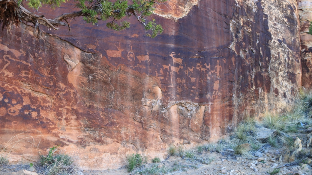 Belle vue sur un panel de pétroglyphes de Shay Canyon, à Indian Creek, près de Monticello, dans l'Utah.