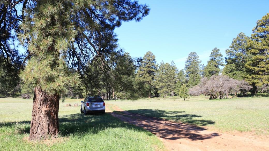 Hammond Canyon Trailhead - Cedar Mesa - Utah