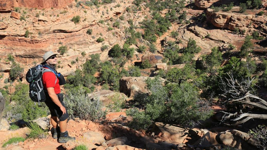 Début de la descente du First Fork of Slickhorn Canyon. Cedar Mesa, près de Blanding, Utah.