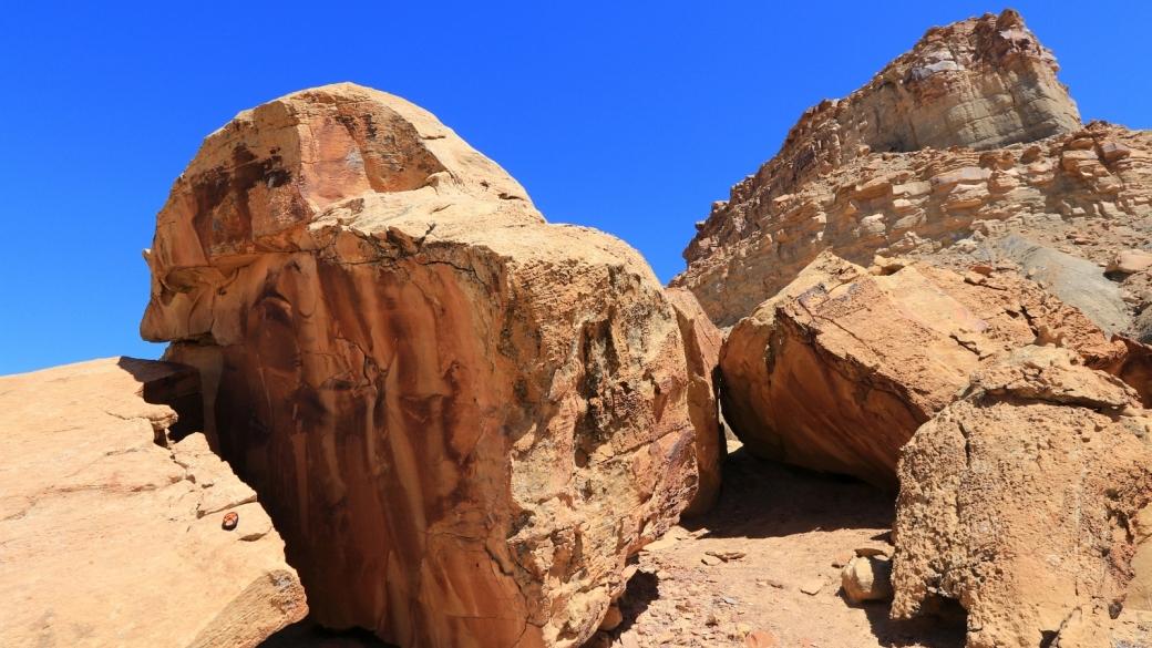 Vue d'ensemble du panneau de pétroglyphes de Coal Canyon, près de Green River, dans l'Utah.