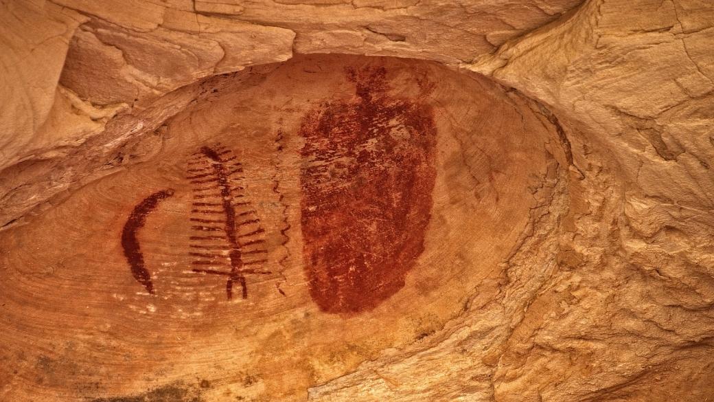 Le Centipede Panel du Seven Mile Canyon, près de Moab, dans l'Utah.