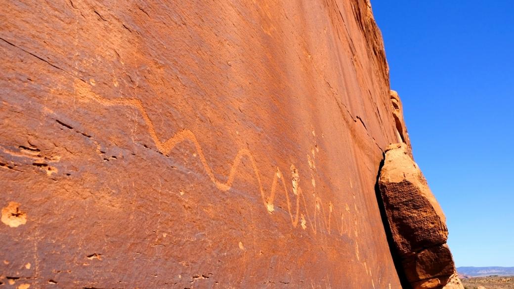 Joli serpent le long des Dump Panels, à Moab.