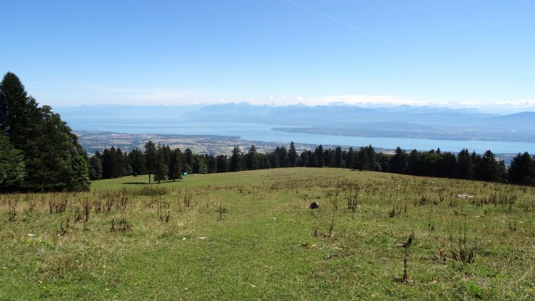 Vue sur le lac et la chaîne des Alpes, depuis le haut de La Gerle.
