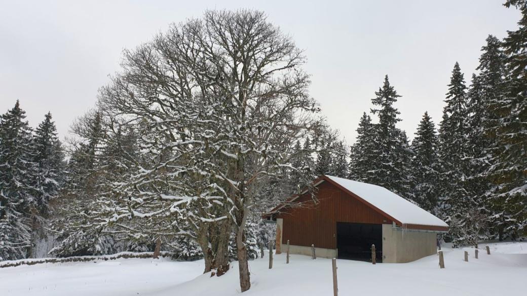 Chalet Neuf - Vaud - Suisse
