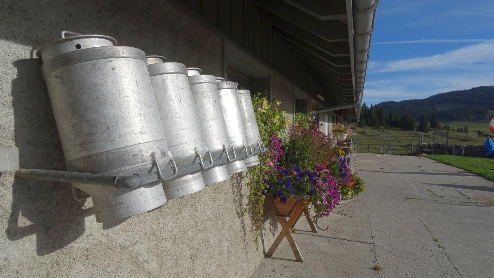 Pré de Bière - Le Chenit - Vaud - Suisse