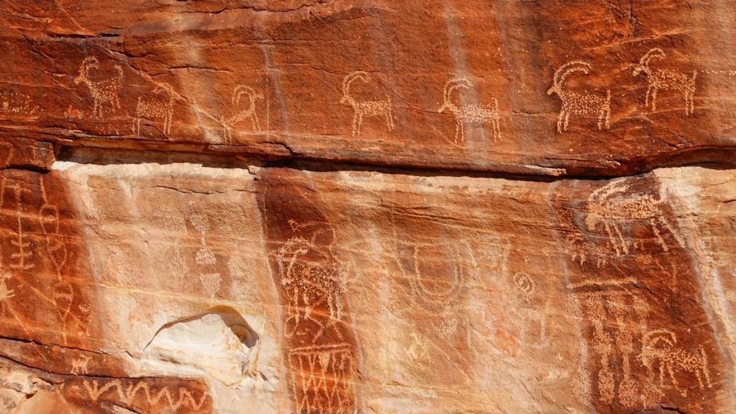 Vue sur quelques-unes des chèvres du Twenty-one Goats Panel, à Gold Butte National Monument, dans le Nevada.