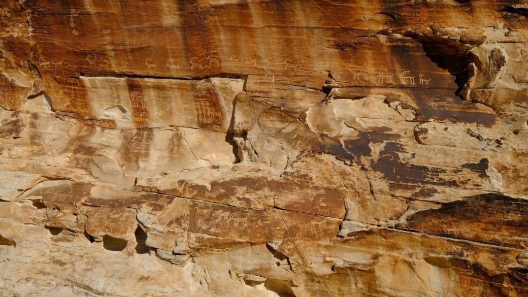 Vue de près du Twenty-one Goats Panel, à Gold Butte National Monument, dans le Nevada.