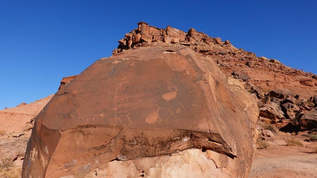 Magnifiques pétroglyphes avec des chèvres, à Little Black Mountain Petroglyph Site, Arizona Strip.