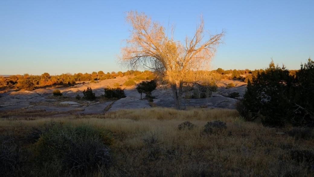 Dernière photo du jour prise près du reservoir du Government Trail, alors que le soleil est en train de se coucher.