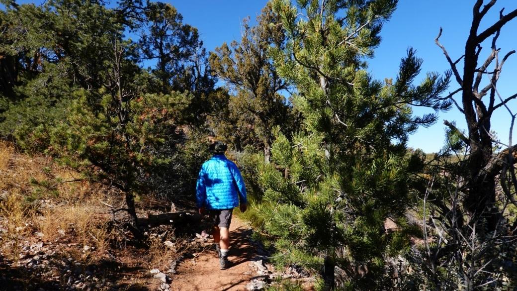 En remontant par le Sandal Trail, au Navajo National Monument.