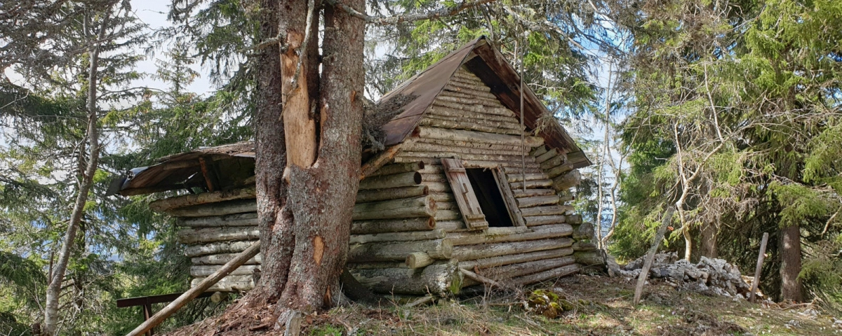 La Soldanelle, une cabane à l'abandon.